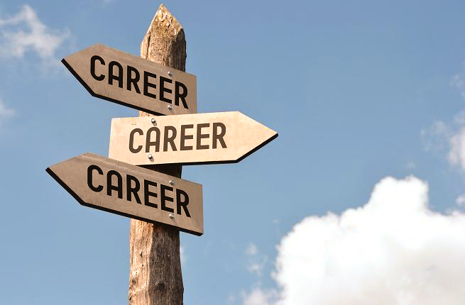Road to your career | Career path